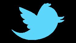 cómo conseguir más seguidores en twitter marta morales castillo periodista community manager blog curiosidades de social media